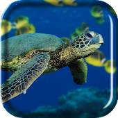 Turtle Sea Live Wallpaper