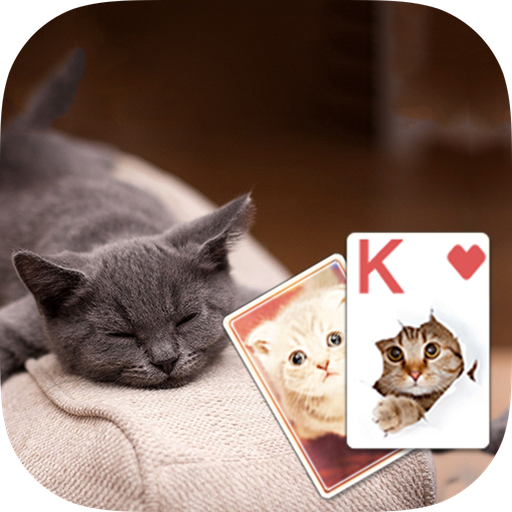 Solitaire Cute Cats Theme 紙牌 App LOGO-APP開箱王