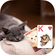Solitaire Cute Cats Theme 2.419 Icon
