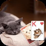 Solitaire Cute Cats Theme  Icon