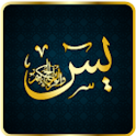 Sure Yasin Audio Urdu icon