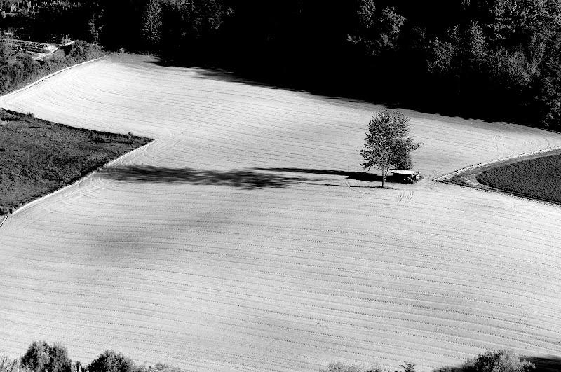 Il tracciato dell'aratro. di Naldina Fornasari