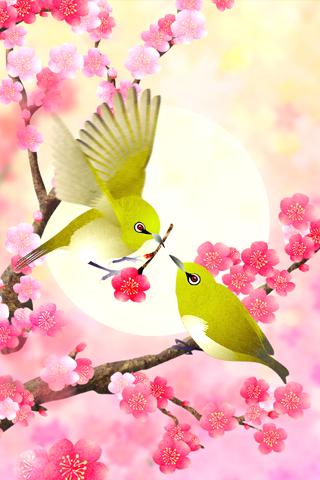 Plum-Blossom and White-Eye скачать на планшет Андроид