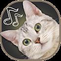 Cat Sounds Ringtones icon