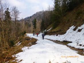 Photo: Sa Srneca prema Oštrici-put 41