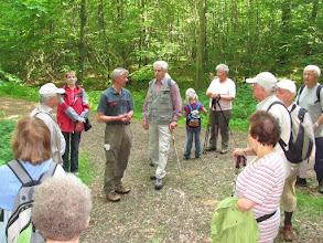 Photo: Wandertag zur biologischen Vielfalt im Int. Jahr der Wälder