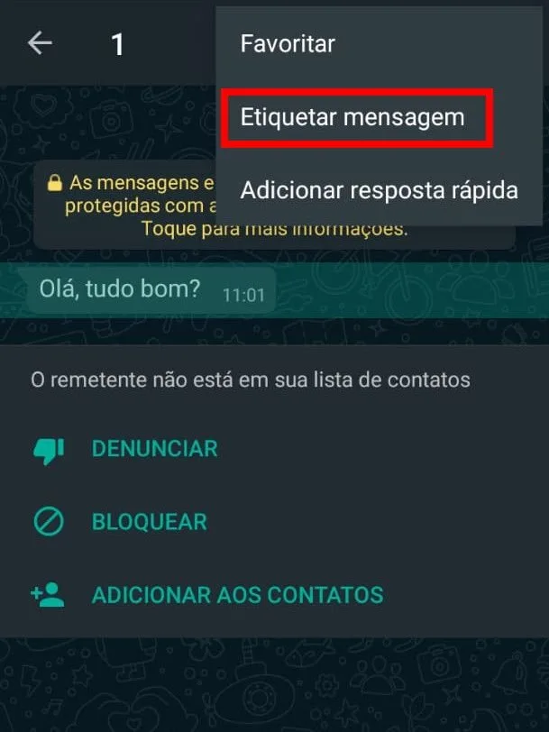 Como Criar No WhatsApp Business Etiquetas Organizadas ( Tutorial Completo 2021) 9