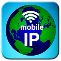 My IP and Wifi Info icon
