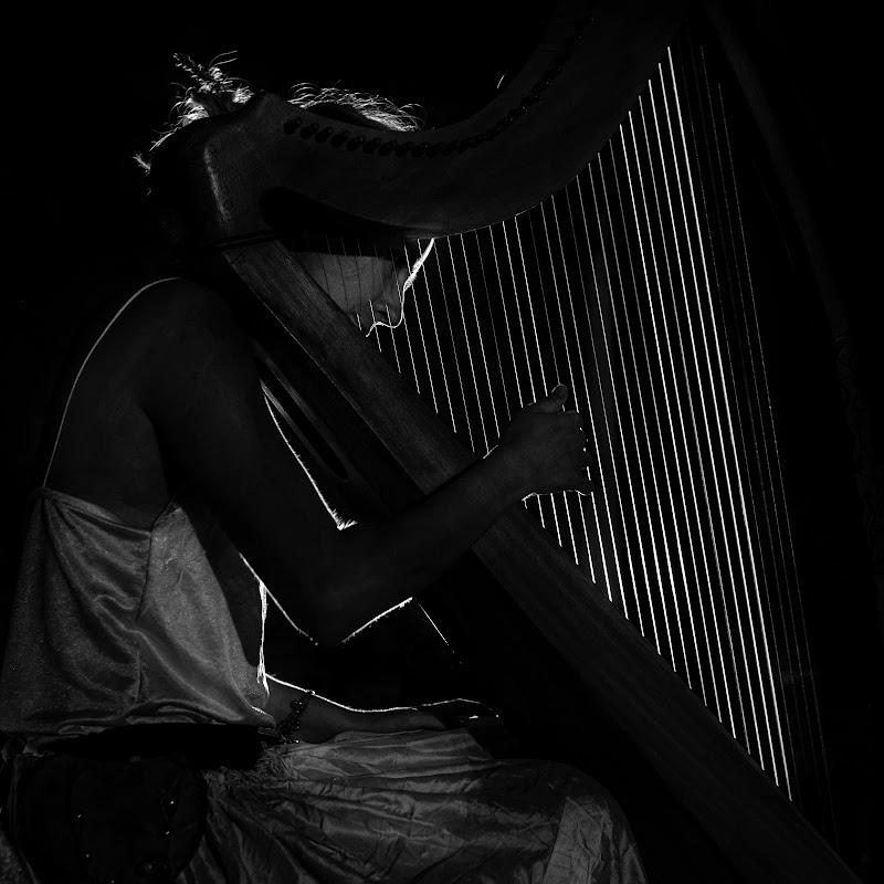 La musica diventa luce di Buttero59