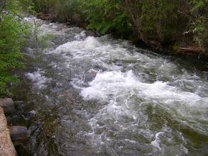 Photo: речка Нестериха.
