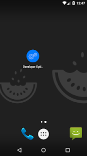 Developer Options shortcut & Device Info