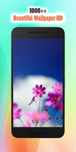 Beautiful Wallpaper Phone HD