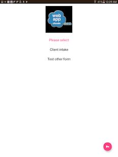 SalonCloudsPlus Intake Form - náhled