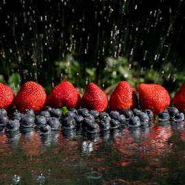 Reflective Blueberries & Strawberries by Jim Downey - Food & Drink Fruits & Vegetables ( water, blueberry, wet, garden, strawberry, reflective )