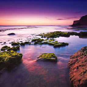 Earth Musings by José Ramos - Landscapes Beaches