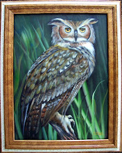 """Photo: OWL.  Oil on canvas 18 x 24"""", $399.00 without frame.  If you want to have the frame please add $60.00"""