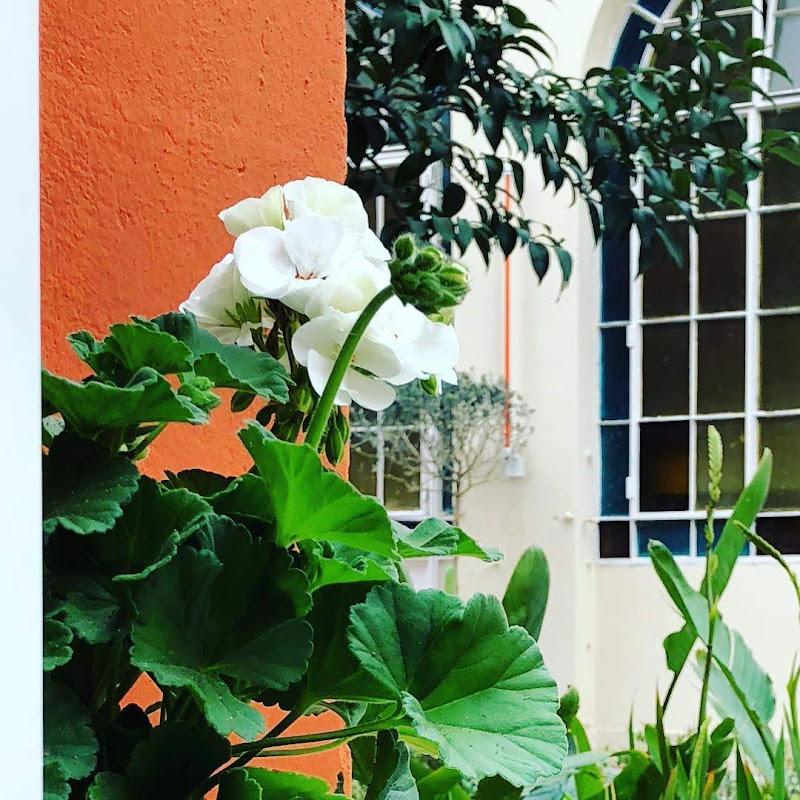 Casa FOA 2018: Patio Paraiso Gourmet - Estudio Marta Carena y Asoc.