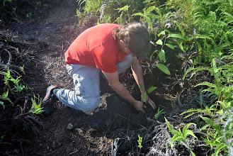 Photo: Sergio pianta il suo albero