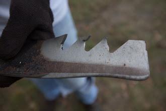 Photo: sharp teeth