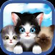 고양이의 세계 😺 페이스북 로그인 서버 icon