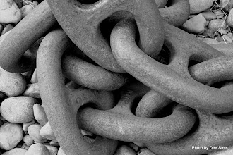 Photo: (Year 2) Day 346 - Some Old Chain