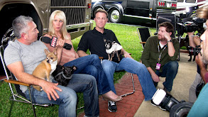 Daytona Dogs thumbnail