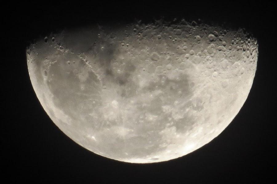 Moon by Jo-Ann de Smit - Novices Only Objects & Still Life (  )