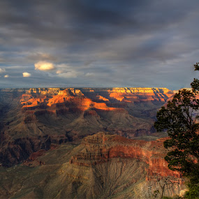 Canyon Evening by Dave Files - Landscapes Sunsets & Sunrises ( mountains, park, sunset, canyon, rocks, digital )