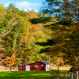 Little Red Barn by Gerri Macilvane - Uncategorized All Uncategorized ( red, shed, fall, barn, autumn, red roof, upstate new york )