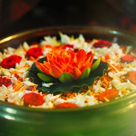 A N T I Q U E  by Tenebie George - Flowers Flower Arangements ( lotus, popular, fine art, artistic objects, antiques )