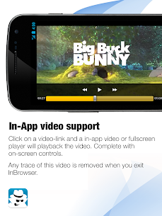 InBrowser – Incognito Browsing Apk Latest Version Download For Android 10