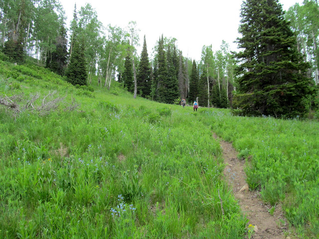 Climbing toward the southwest ridge of Seeley Mountain