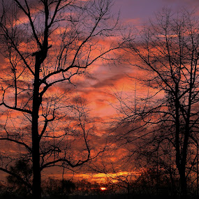 Christmas Day by Kevin Hill - Landscapes Sunsets & Sunrises ( clouds, colors, sunset, christmas, cloudscape, sunrise,  )
