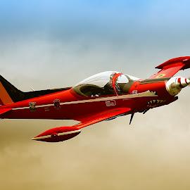 Marchetti SF260 by Jos Meubis - Transportation Airplanes (  )