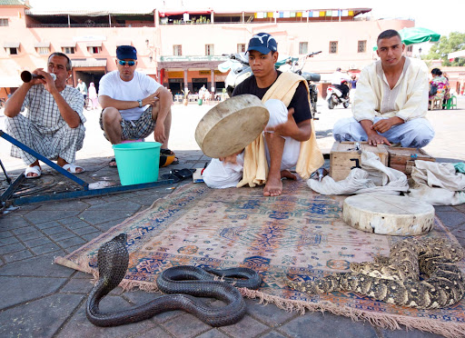 Snake charmers in the Jemaa el-Fnaa public square of Marrakesh, Morocco.