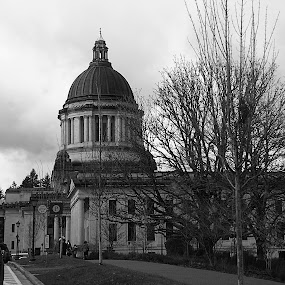 February  at the Capital in Olympia by Jennifer Hill - Buildings & Architecture Architectural Detail