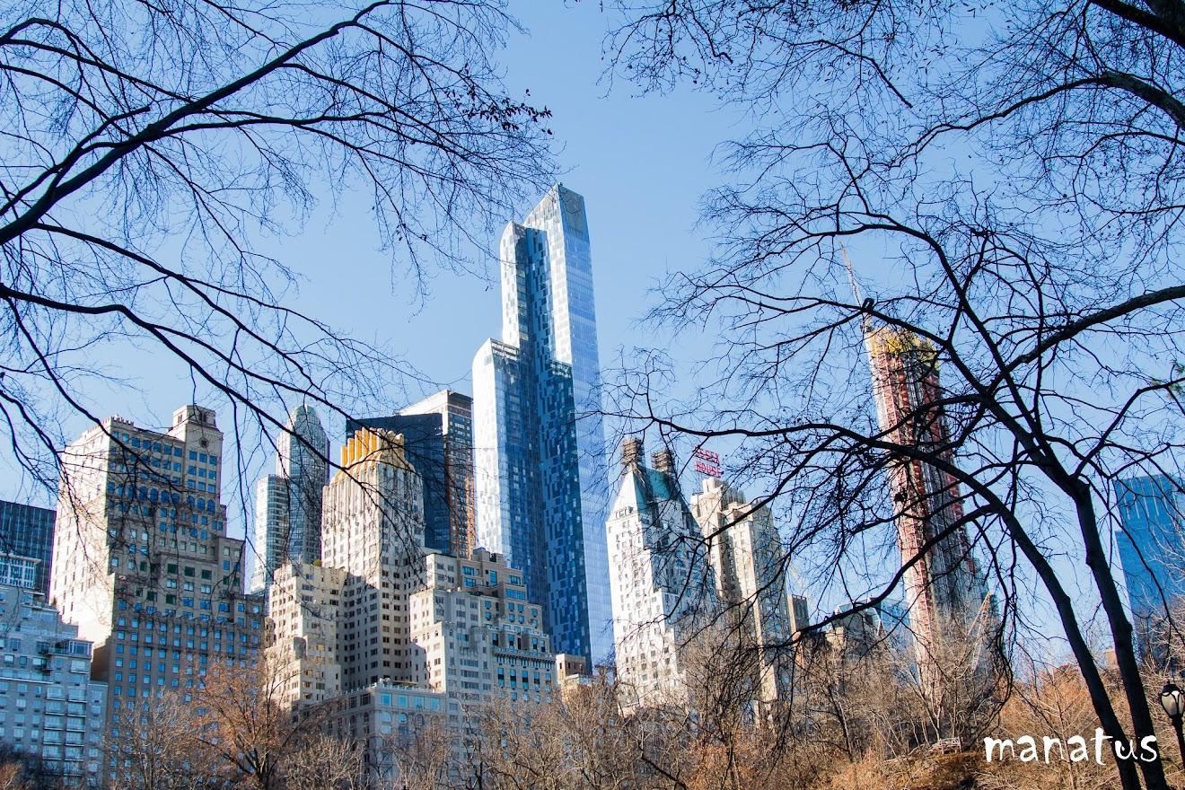 rascacielos azules