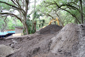 Photo: Salt Springs, Marion County.  Excavations supported by US Forest Service and National Park Service.  Summer of 2009.
