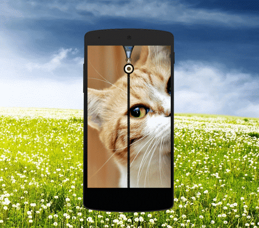 Cute Cat Zipper Lock Screen