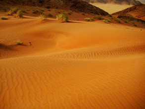 Photo: Désert du Namib, Namib Naukluft National in Namibia.