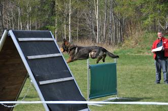 Photo: Apport over hopp