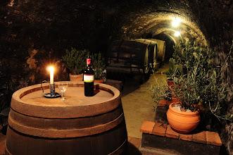 Photo: Weinkost in der Kellerröhre