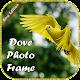 Dove Photo Frame / Dove Photo Editor Download on Windows