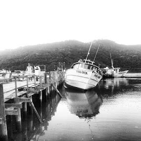 by Sergio França - Transportation Boats ( vivaavida, fishing )