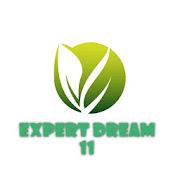 Expert 11 Dream