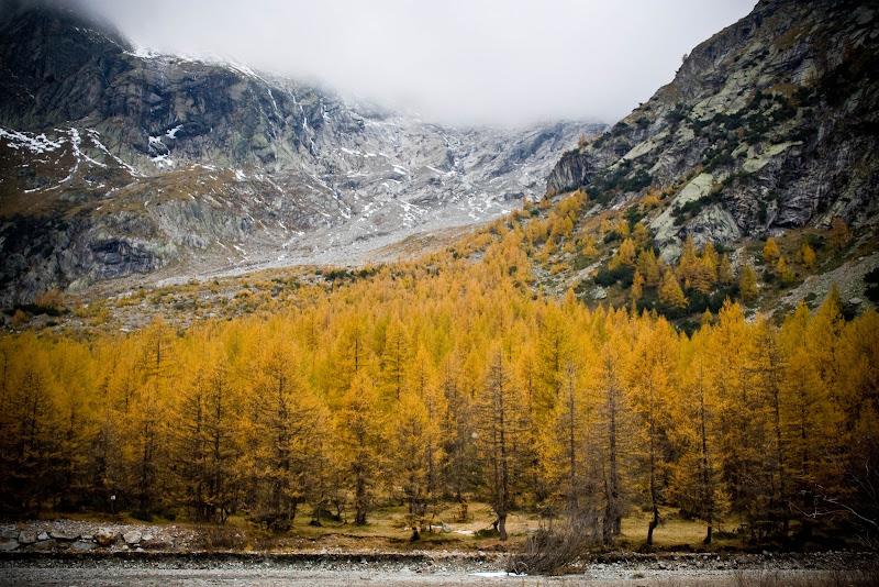 Val Ferret di Claudio Polesel