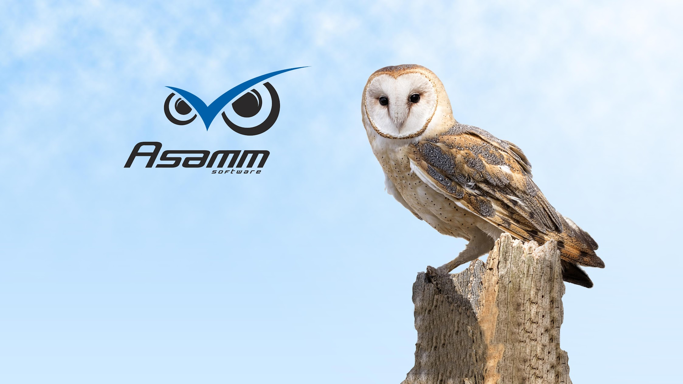 Asamm Software, s. r. o.