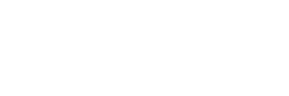 Brighton Jones logo white on transparent