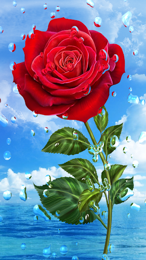 Download Flowers And Roses Animated Images Gif 4K For PC 2