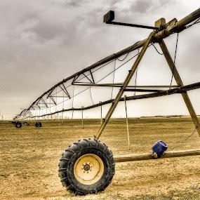 evolution of sprinkler by Roel Gestiada - Landscapes Deserts
